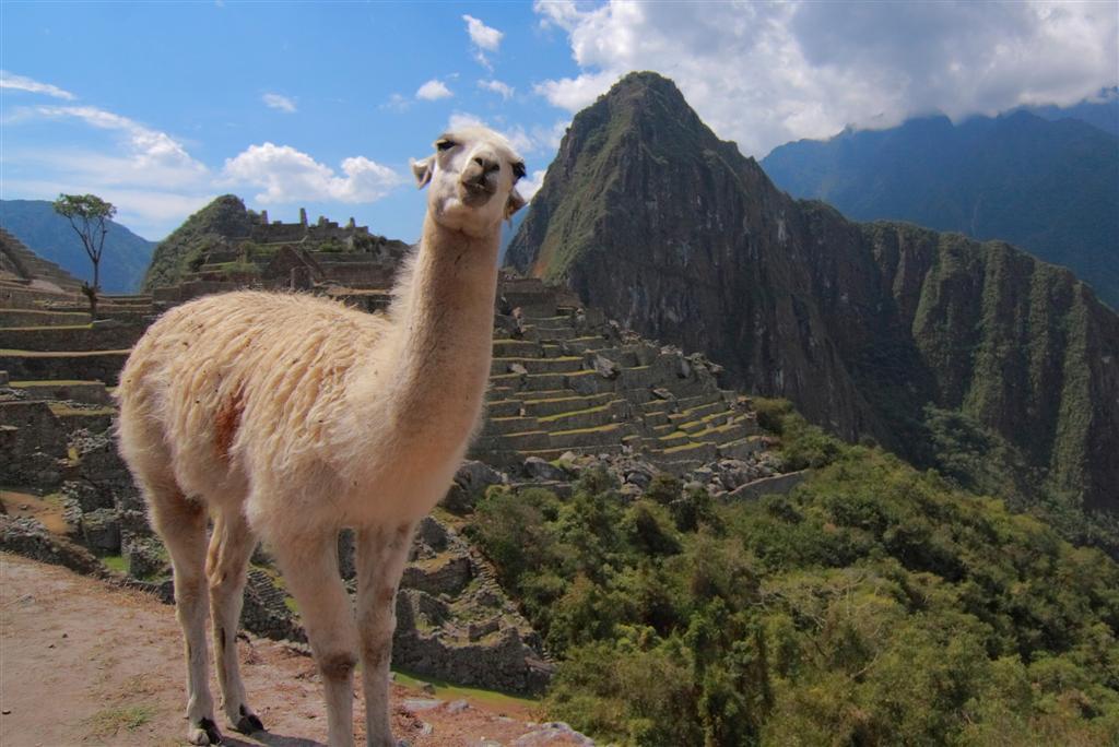 cuzco-11